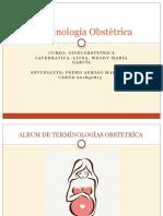 208113510-Terminologia-Obstetrica