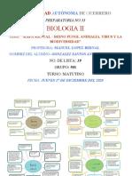 Biologia II - Mapa Mental Reino Fungi, Animalia, Virus y La Biodiversidad - Ajgs - 501