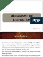 Mécanisme de l'Infection.pdf · Version 1