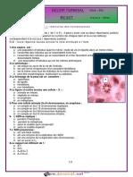 Devoir de Synthèse N°3 - SVT - 2ème Sciences (2015-2016) Mme Harbawi Mbarka