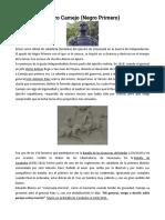 BIBLIOGRAFIA de Jose Antonio Paez