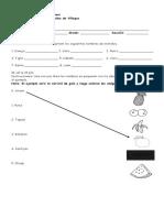 examenes ruth (Autoguardado)