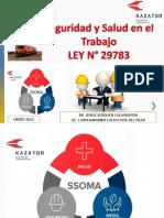 Capacitacion Difusion Ley 29783 y Normativa ENERO 2021