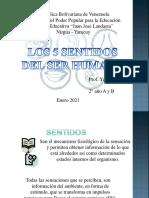 LOS CINCO SENTIDOS-convertido