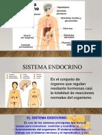 Sistema Endocrino, Inmunologico y Urinario