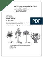 Evaluacion Diagnostica Grado 4to Naturales