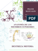 PRAXIS-MANUALES