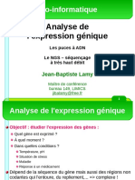 Cours Puce a Adn