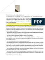 1 Entrevista a Amadeu de Souza Cardozo - Minha Versão (1)