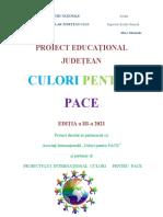 Culori pace 2020-2021