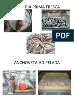 REESTRUCTURADO ANCHOVETA ENLATADA