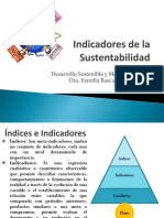3.3 Indicadores Sustentabilidad (1)