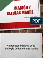 Presentando_las_células_madre