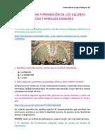 ECUMENISMO Y PROMOCIÓN DE LOS VALORES ÉTICOS Y MORALES COMUNES (1)