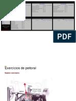 Vdocuments.mx Tabela de Treino Leandrotwin Ricard (1)