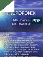 Hidroponik