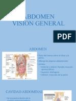 1-Vision general, cavidades, pared anterolateral