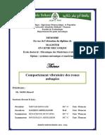 Comportement Vibratoire Des Roues Aubagees (1)
