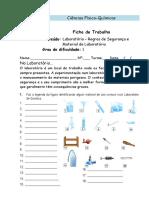 Ficha Formativa Fq7_Regras de Segurança e Material de Laboratório