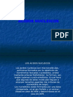acidosnucleicos-110214160750-phpapp01
