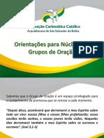 FORMAÇÃO PARA NÚCLEO DE GO