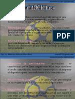 Planificacion Deportiva