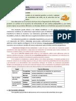 T. 15. Mutaciones e Ingeniería genética