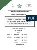 Montage Et Gestion Participative de Projets de Developpement