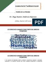 10129474_OCTAVA CLASE-TEORÍA DE LA PRUEBA.-MAESTRIA-DR. HUGO-2021.