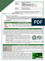 Guía Nº2 Fotosíntesis y Respiración Celular (3)