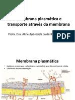Aula3Membranaplasmticaetransportes 02.03