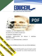 A.A INTEGRADORA 2 ENSAYO Aplicacion de temas y sistemas penitenciarios
