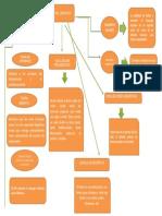 mapa desarrollo del lenguaje.