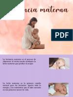 Rotafolio lactancia materna