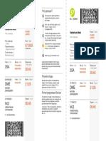 boarding_pass_4212422047345C1