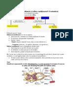 pachete ed cls a7a biologie