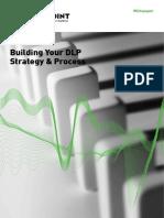 building_dlp_process