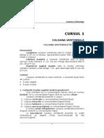 16200026-Anatomie-Si-Embriologie-Anul-I-MEDICINA-Note-de-Curs-Sem