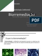 ppt biorremediação+