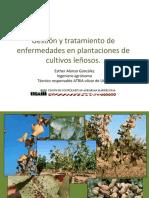 Esther Alonso Gonzalez - Gestion y Tratamiento de Enfermedades en Plantaciones de Cultivos Len Osos (1)