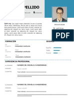 115 Curriculum Vitae Docente Profesor
