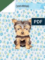 1 perro