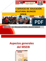 MSEIB CPED 30165 JOSE OLAYA 2021