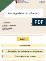 PPT FINALEcointegration de johansen (1)