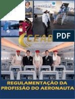 REGULAMENTOS DA PROFISSÃO- julho2020