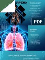 Difusión Sistema Respiratorio 2