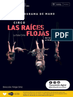las_raices_flojas_pdm