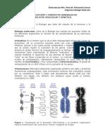 2. Conceptos de B. Molecular y genética