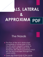 7 - Nasal, Lateral, Approximants