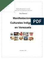 Informe Manifestaciones Indigenas